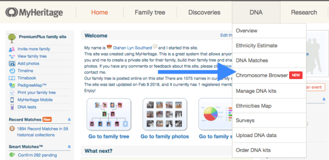 MyHeritage chromosome browser Navigate Group.png