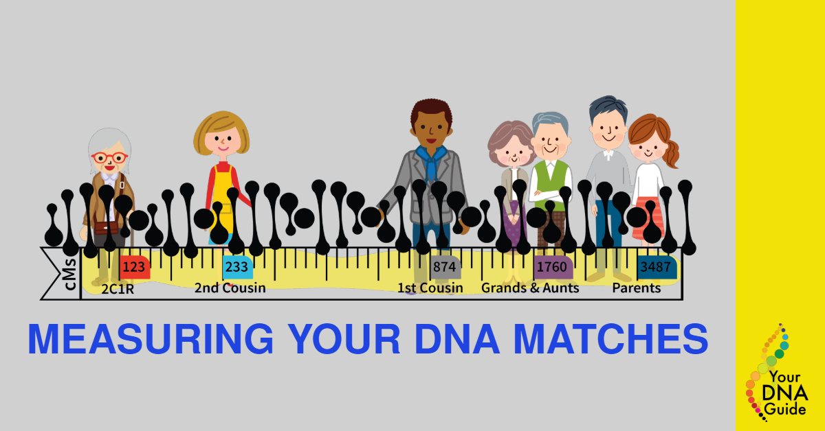 shared centimorgans measuring dna matches.jpg