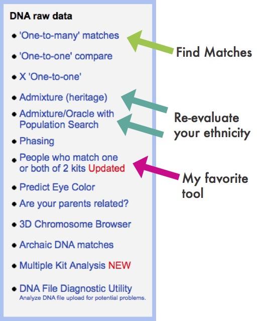 Gedmatch-find-matches.jpg