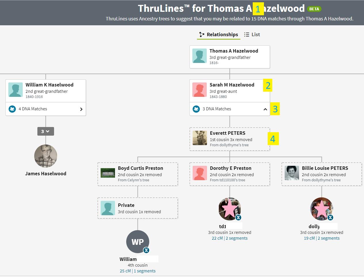 ThruLines Thomas A Hazelwood.PNG