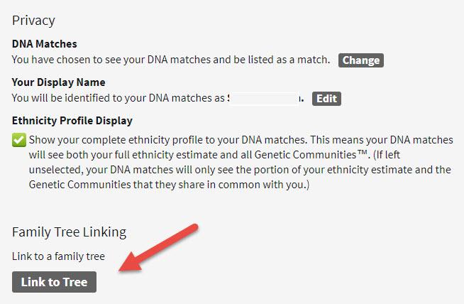 AncestryDNA link tree 2.jpg