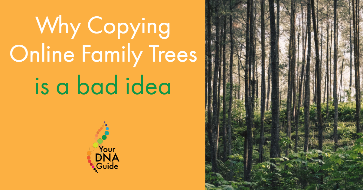 copying online trees (1).png