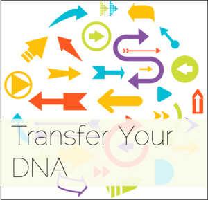 transfer your DNA 11.png