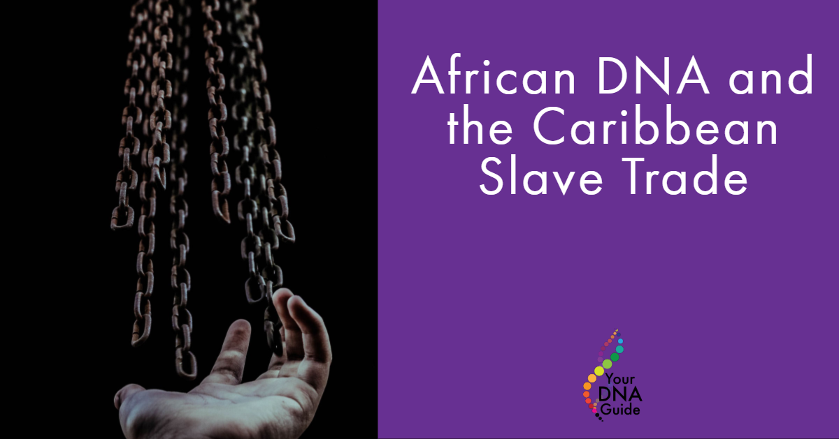 African DNA Caribbean slave trade.png