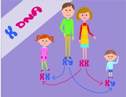 XDNA.jpg