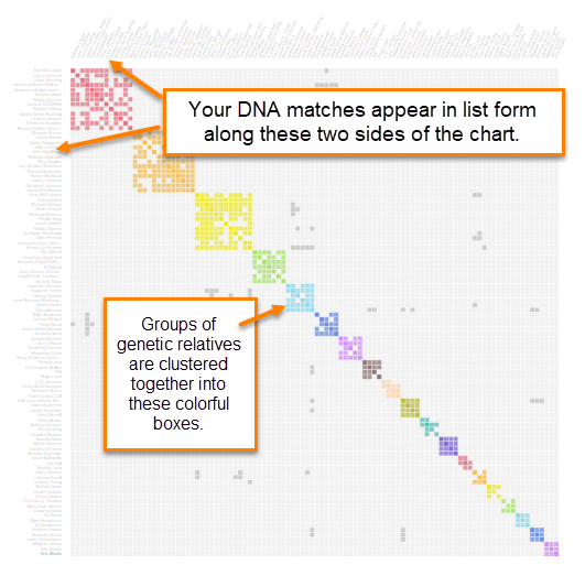 MyHeritage AutoClusters DNA matches intro.png