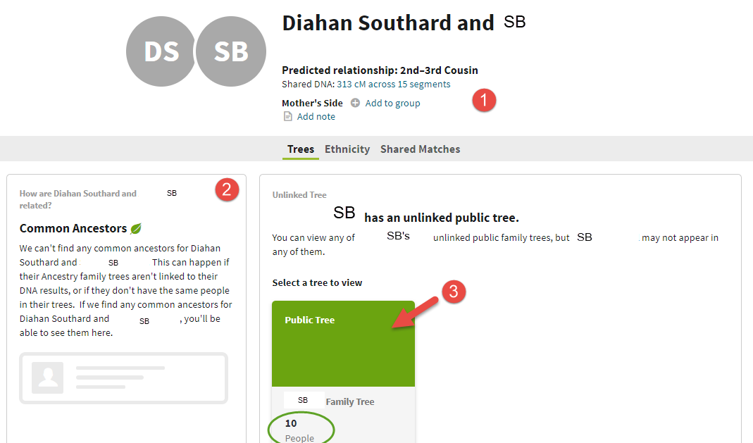 unlinked tree AncestryDNA match page.png