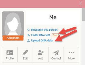 MyHeritage upload DNA link to tree.jpg