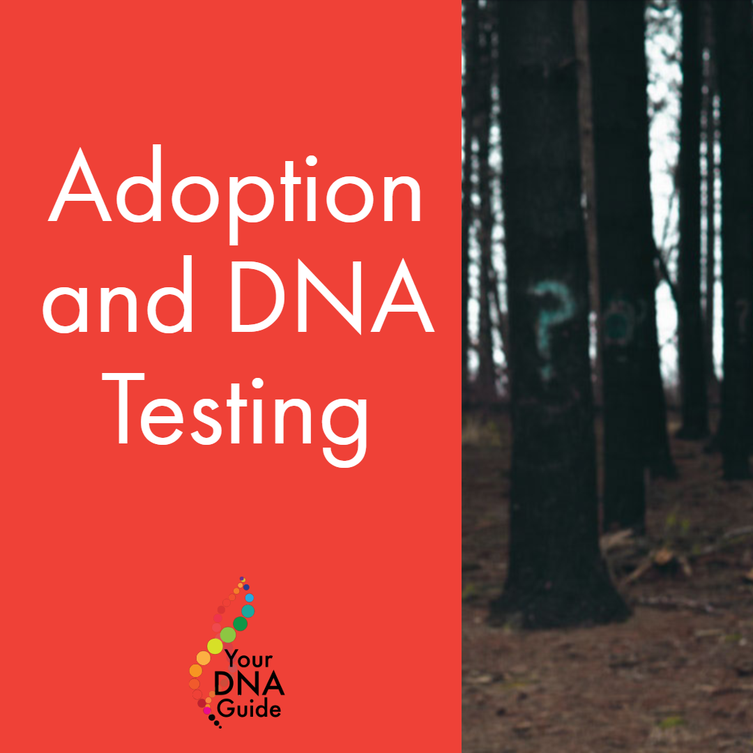 adoption and DNA testing 11.png