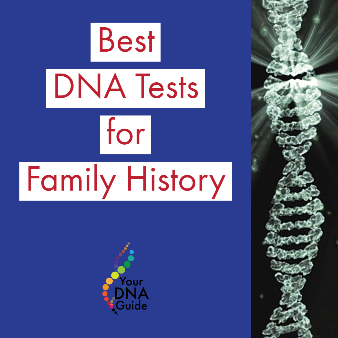 Best DNA Tests for Family History 11.png