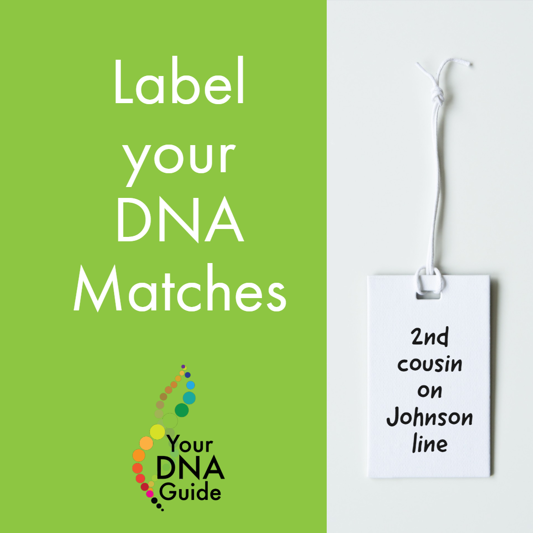 Label your DNA matches