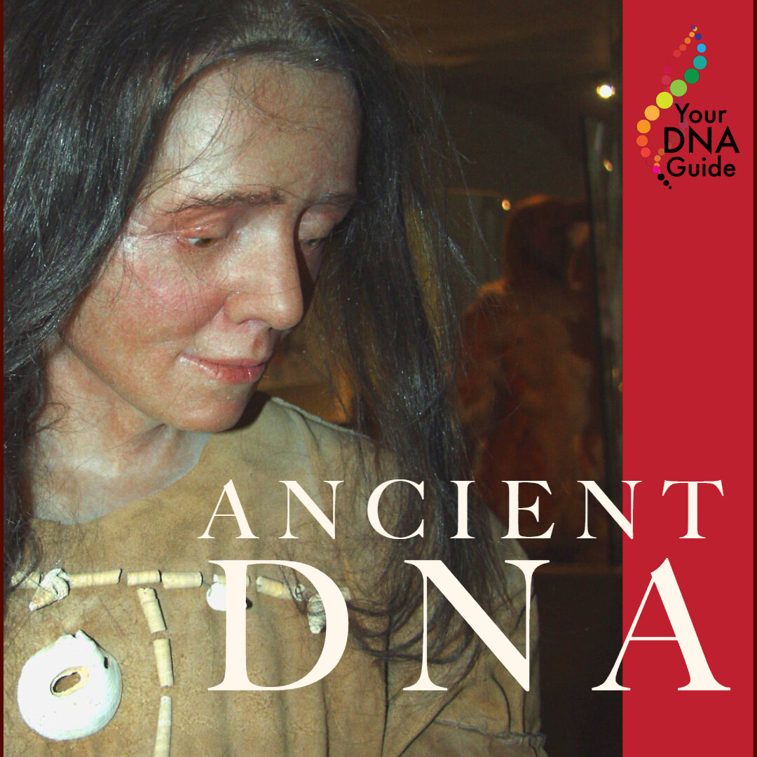 Ancient DNA is Intriguing