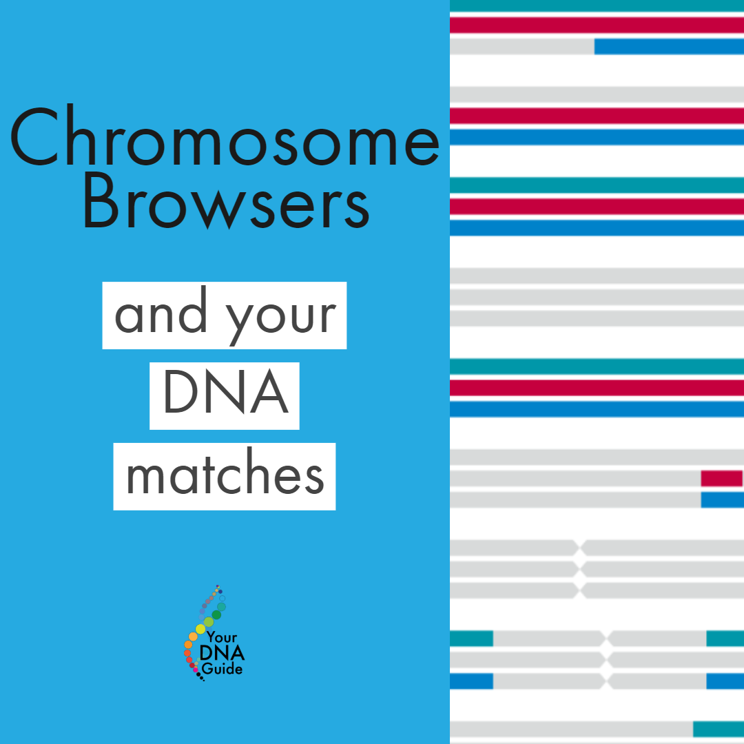 Chromosome Browsers and DNA Matches