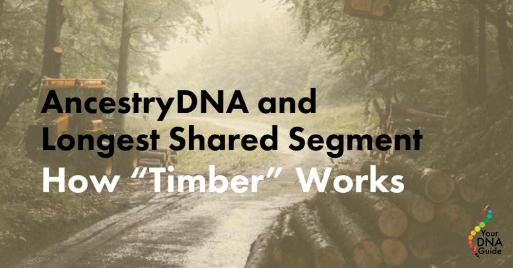 AncestryDNA longest shared segment Timber algorithm .png