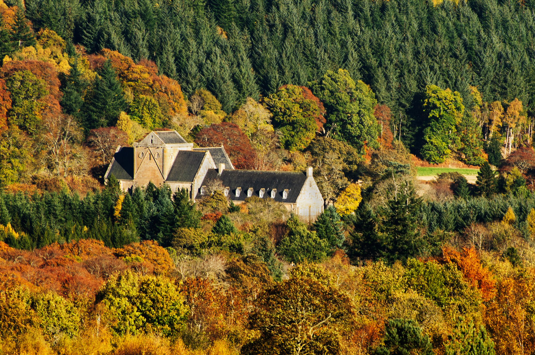 Pluscarden Abbey in Autumn. Image by Peter Chalmers
