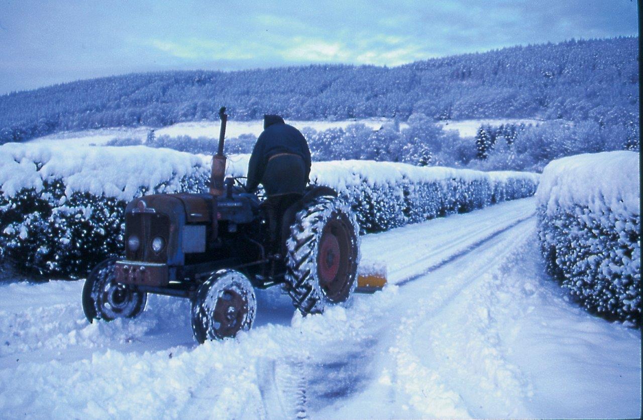 Tractor 1.jpg