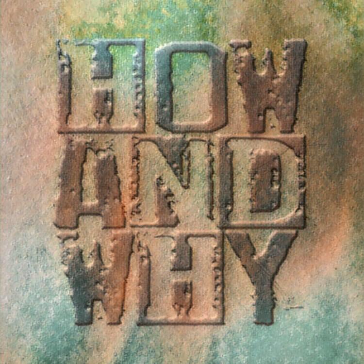 5 - How & Why full color logo.jpg