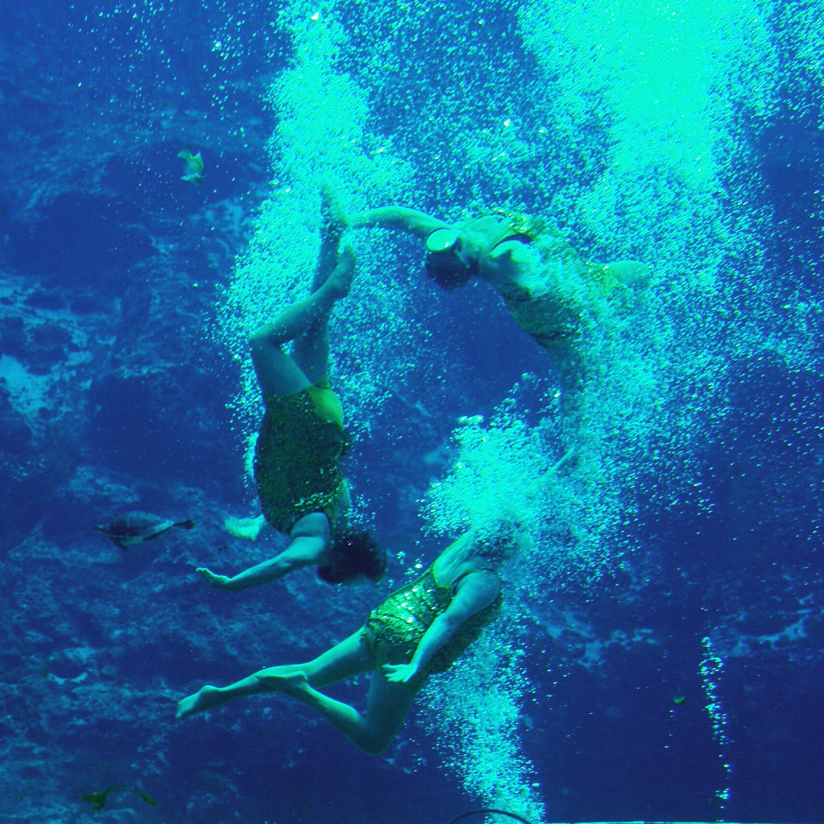 A few of the legendary Sirens of Weeki Wachee.