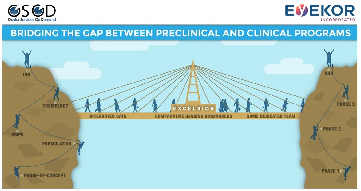 Bridging the Gap with logos.png