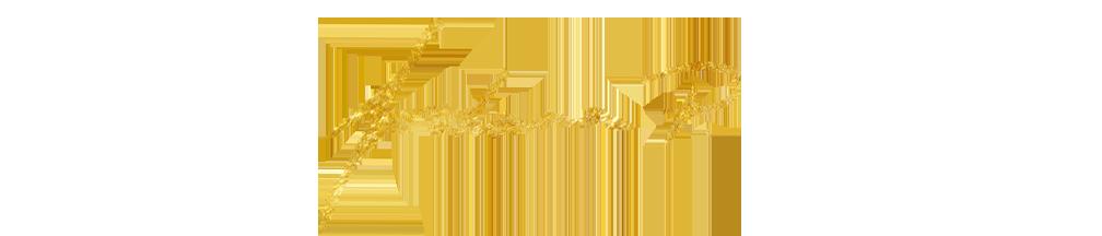 logo_2018_website2.png