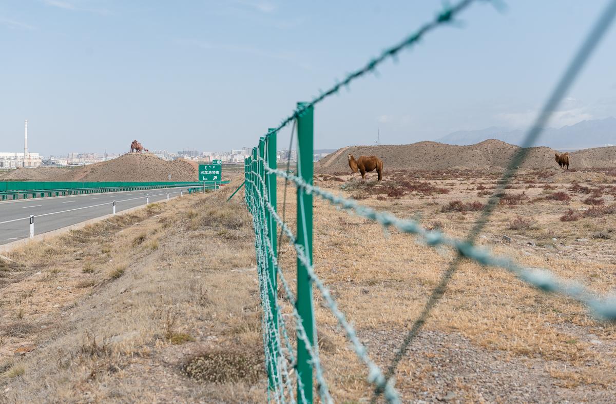 Ba Yan Haote, Inner Mongolia