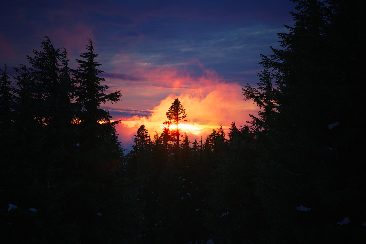 Sunset-1280.jpg