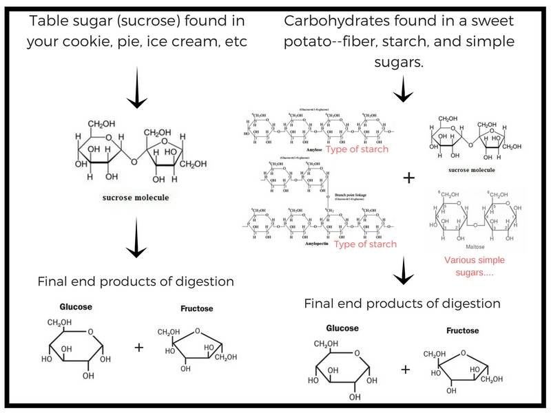 In defense  of sugar...carbohydrate breakdown