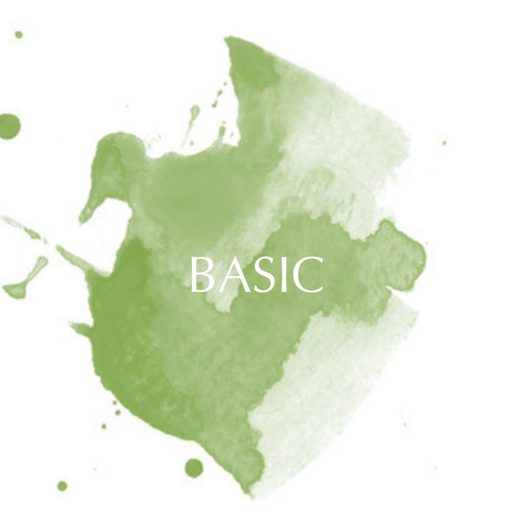 BASIC-3.png