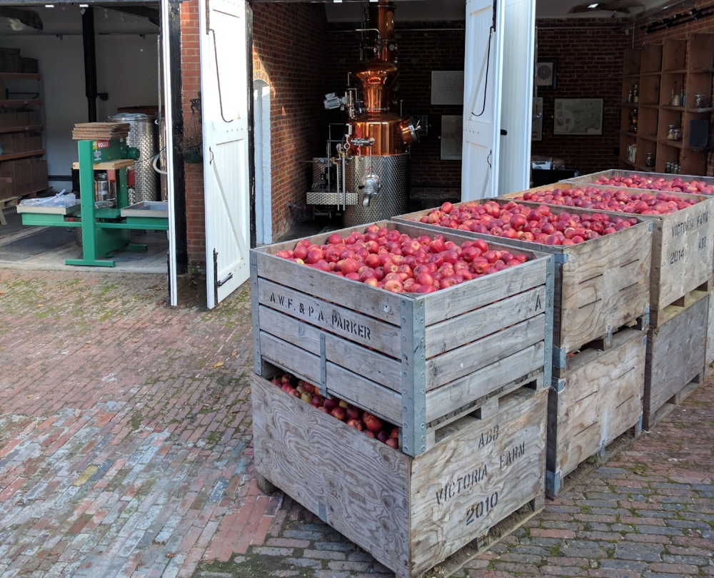 One delivery of apples awaiting pressing