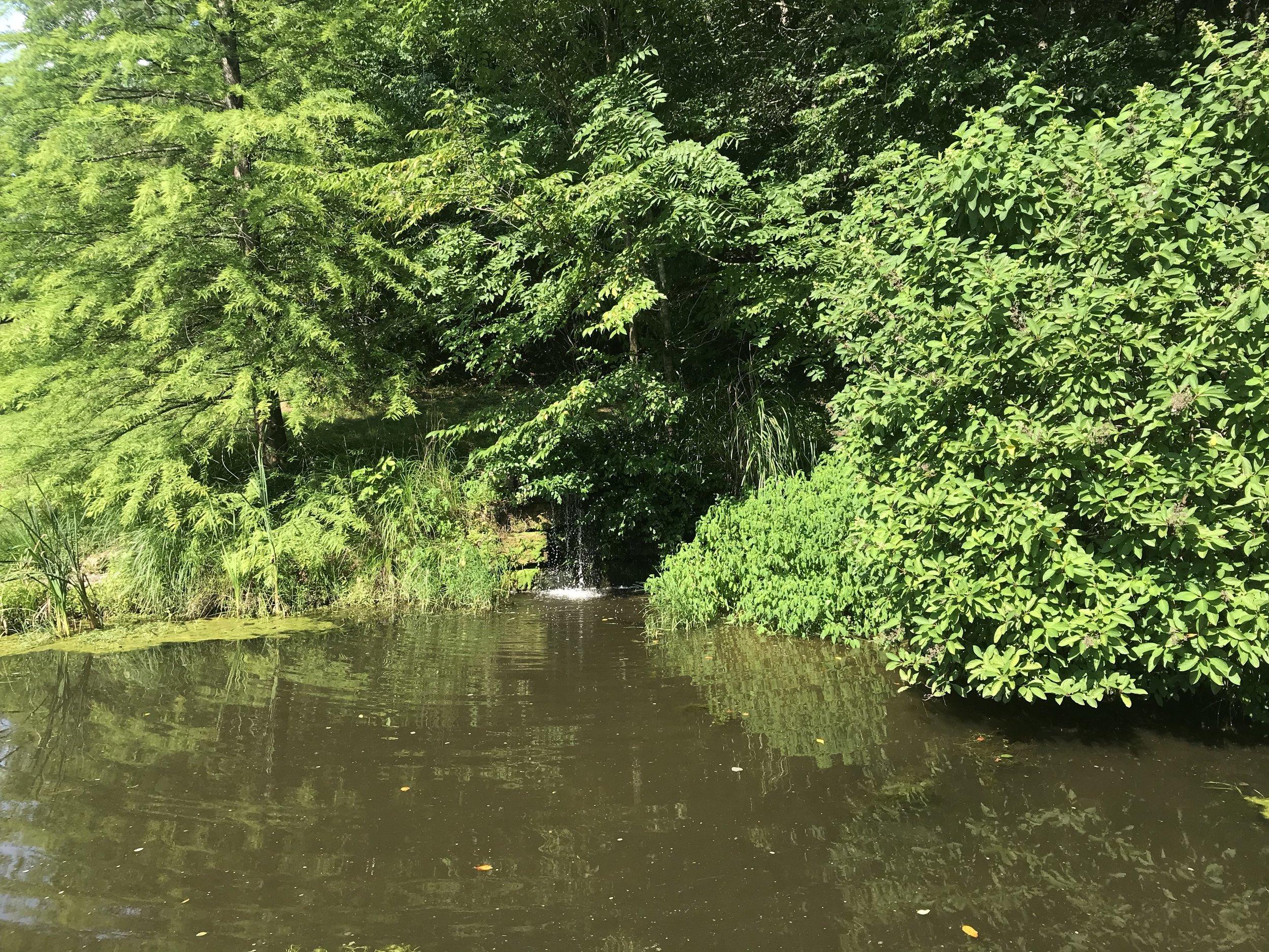 L natural pond.JPG