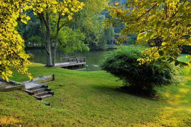 L OS spring pond dock.JPG