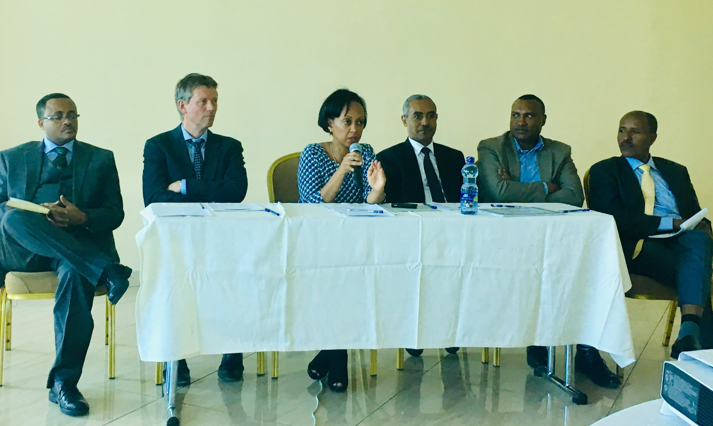 state minister of health Dr. lia Tadesse (center) participates in a panel with ncdi poverty commission co-chair Dr. abraham haileamlak (seated to her left), commission advisor and lancet ncdi poverty commission member dr. ole norheim (seated to her right) and commission members (from left to right) dr. wubaye welelgne, dr. solomon memire, and dr. molla gedefaw.
