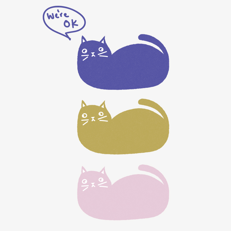 okaycats.jpg