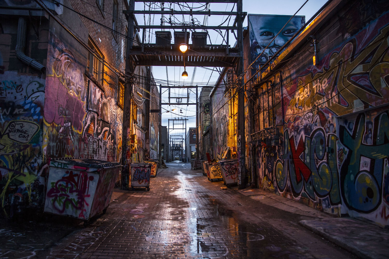 The breathtaking alley behind the  Alex Johnson Hotel  covered in inspiring street art.  It goes by the name Art Alley.