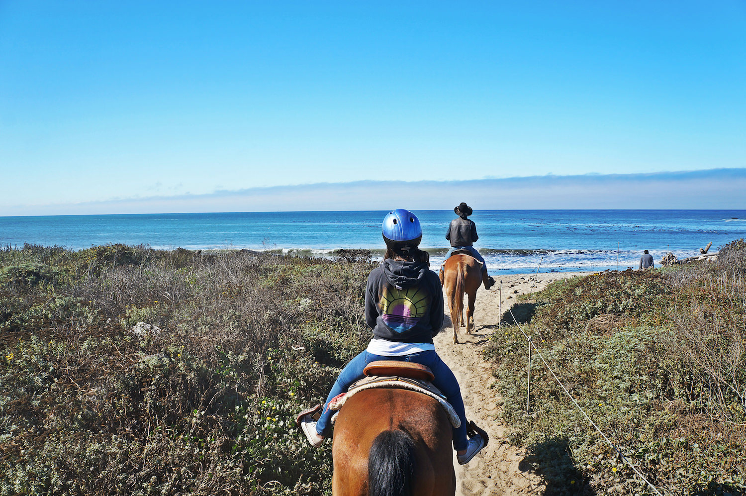 We went horseback riding early in the morning in Andrew Molera State Park where you can access the beach. It was so memorable.