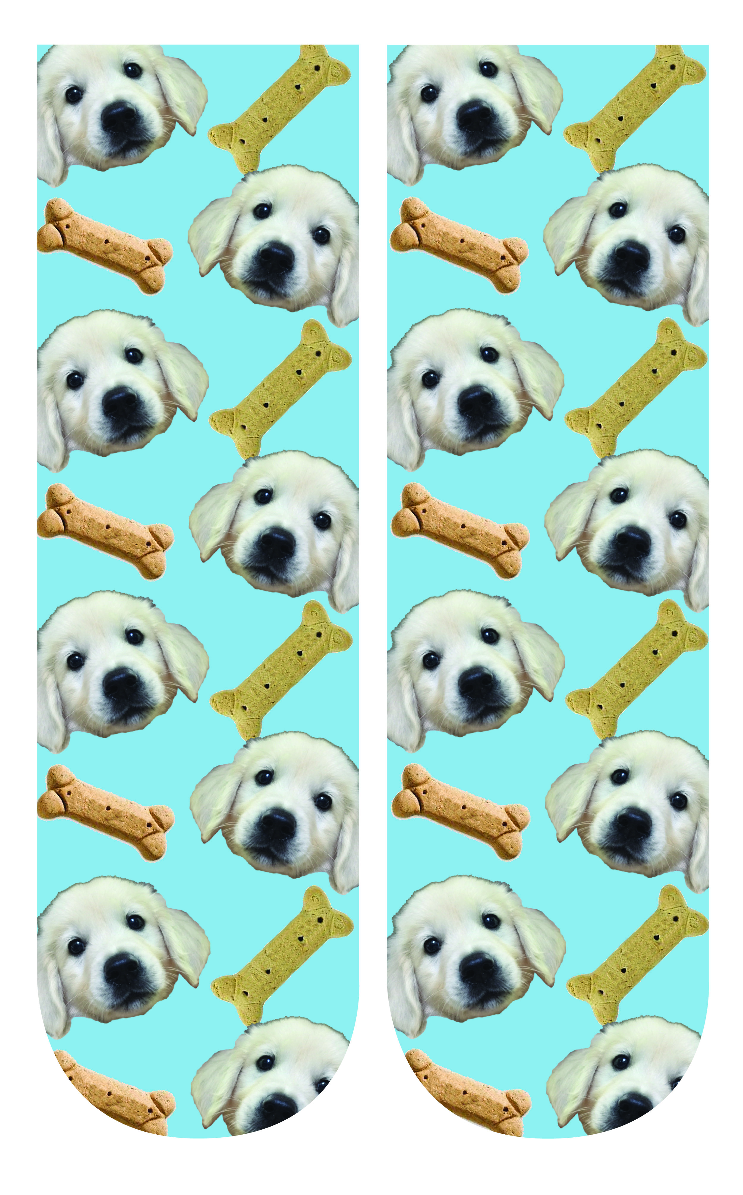 dogsocks.jpg