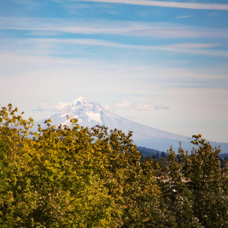 Views of Mt. Hood