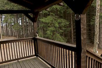 Cabin2L_6370.jpg