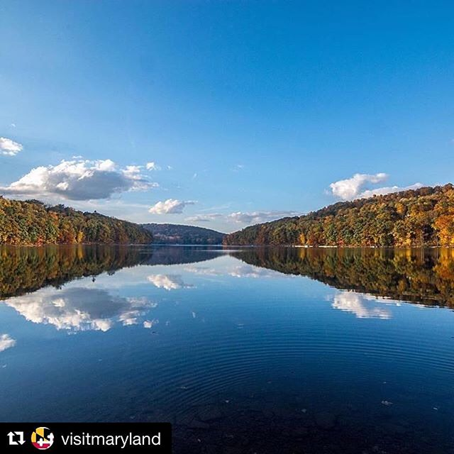 Happy Autumn Glory weekend! 🍃🍂🍁 — #repost @visitmaryland ・・・ Don't miss the vibrant fall colors! Head to #WesternMaryland for the annual Autumn Glory Festival, Oct 10-14! 🍁🍂🍃 ( 📷 @raileyrealty ) #MDinFocus #GarrettCounty #VisitMaryland #Maryland #DeepCreekLake #DeepCreek #AutumnGlory #mountains #lake #fallleaves
