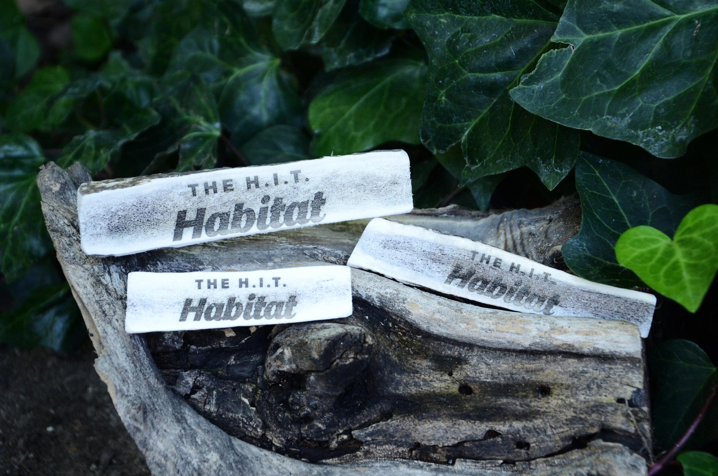 hab_3_antlers.jpg