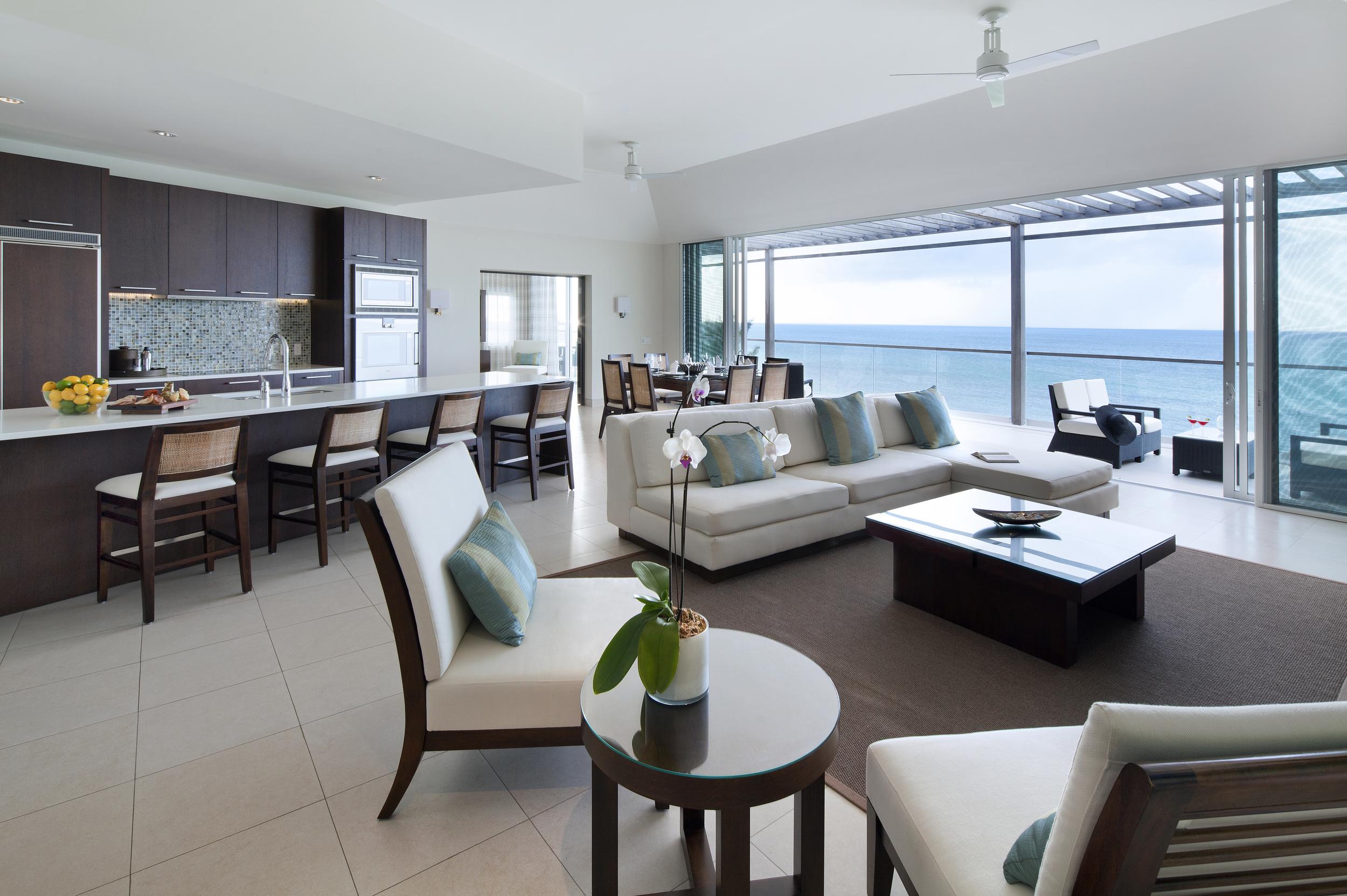 New Penthouse Living Room Day.jpg
