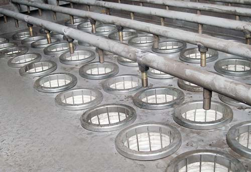 Filtercorp cages & filter bags fitted inside cell plate.