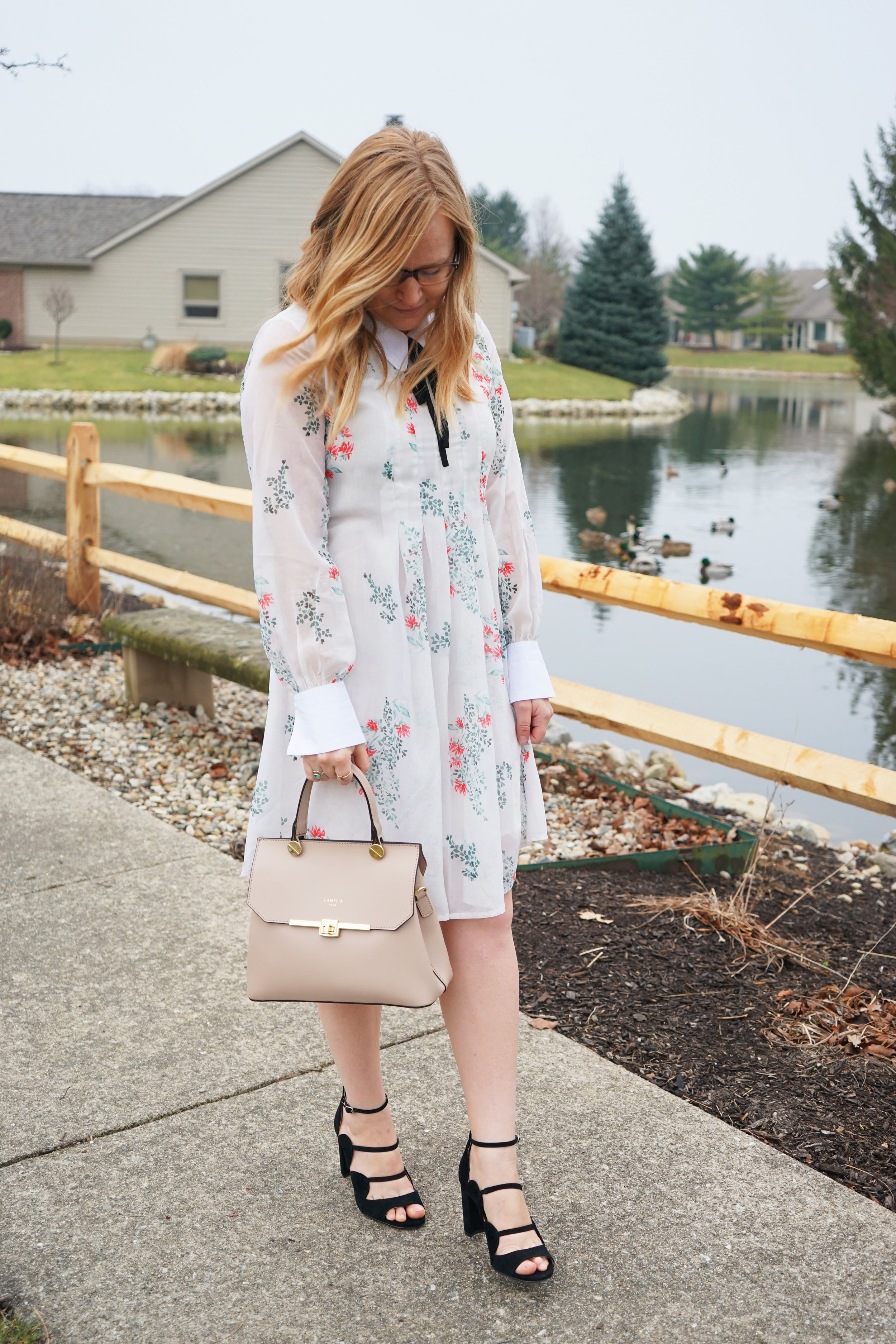 Maggie a la Mode - Anthropologie HD in Paris Louisa Swing Dress, Ann Taylor Ashton Suede Scalloped Heels, Camelia Roma Leather Handbag Cameo