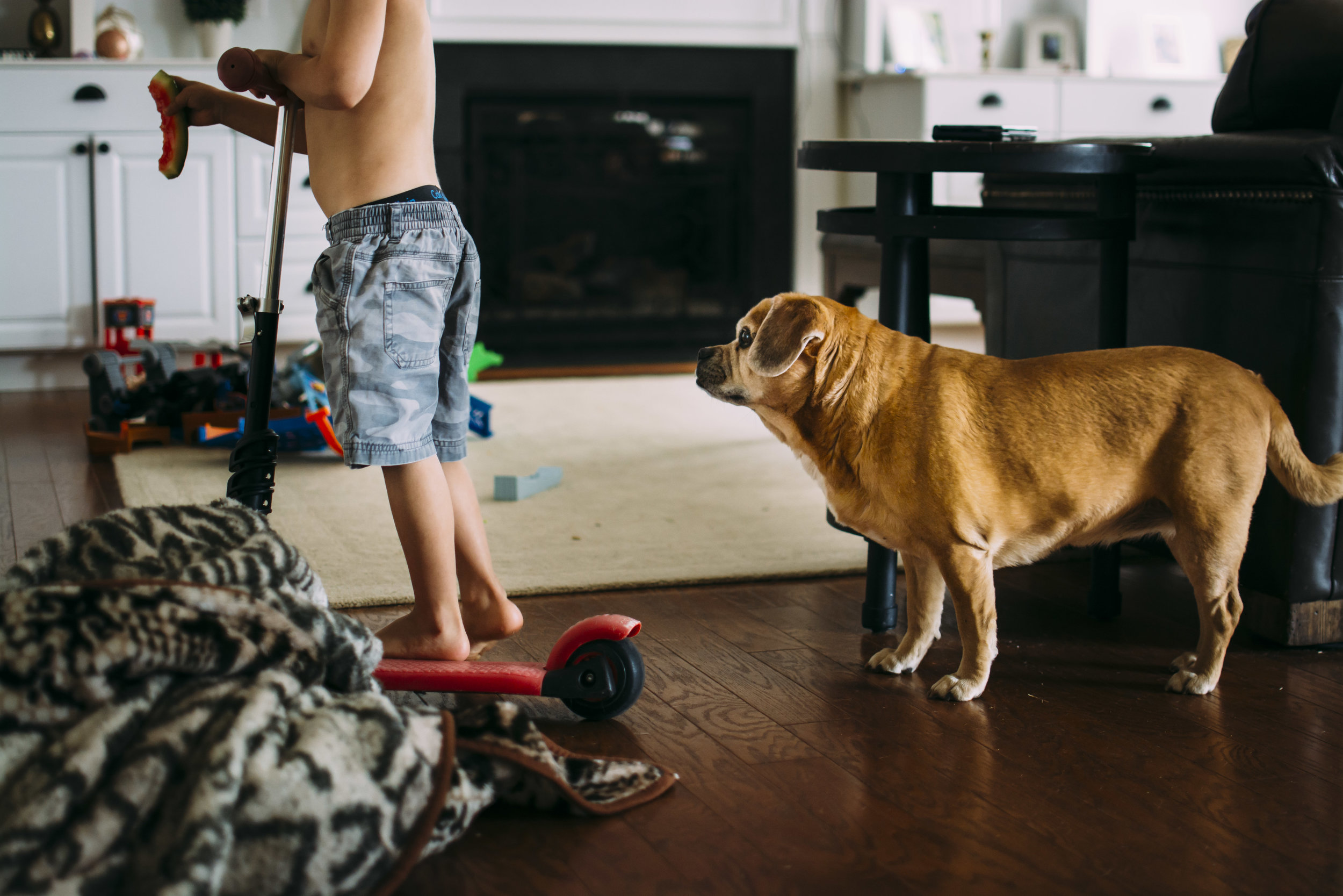 playing with the dog.  fort mill, sc family photographer  confetti pancakes, breakfast