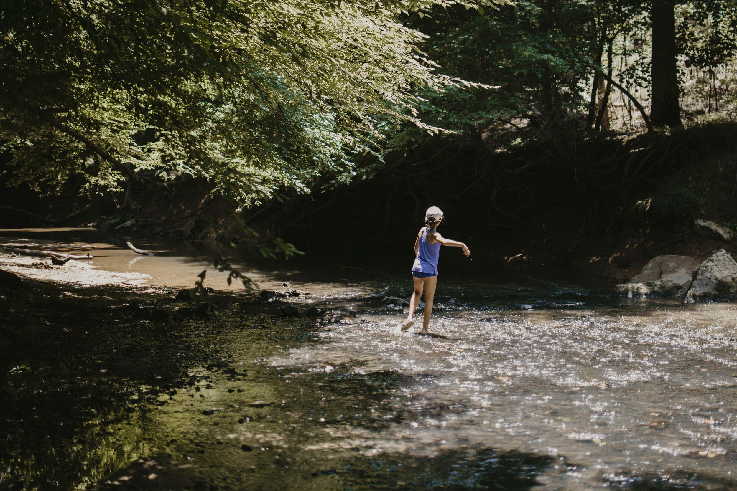 Ann Springs greenway