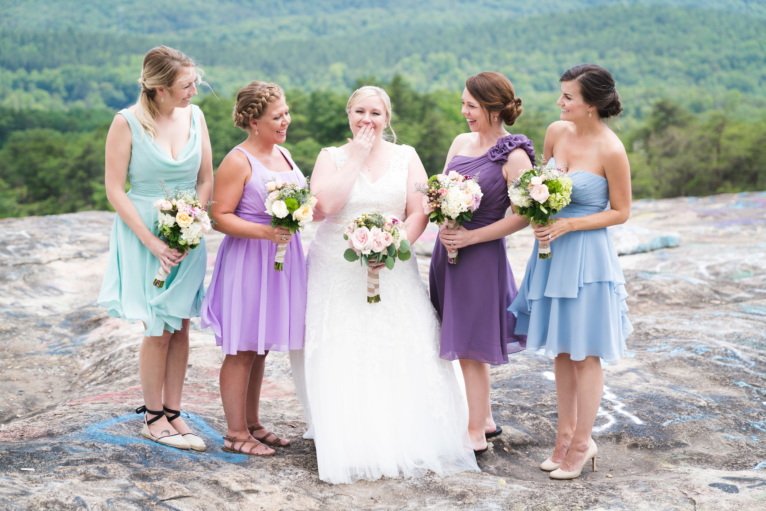 The bridal party | Bald Rock, SC