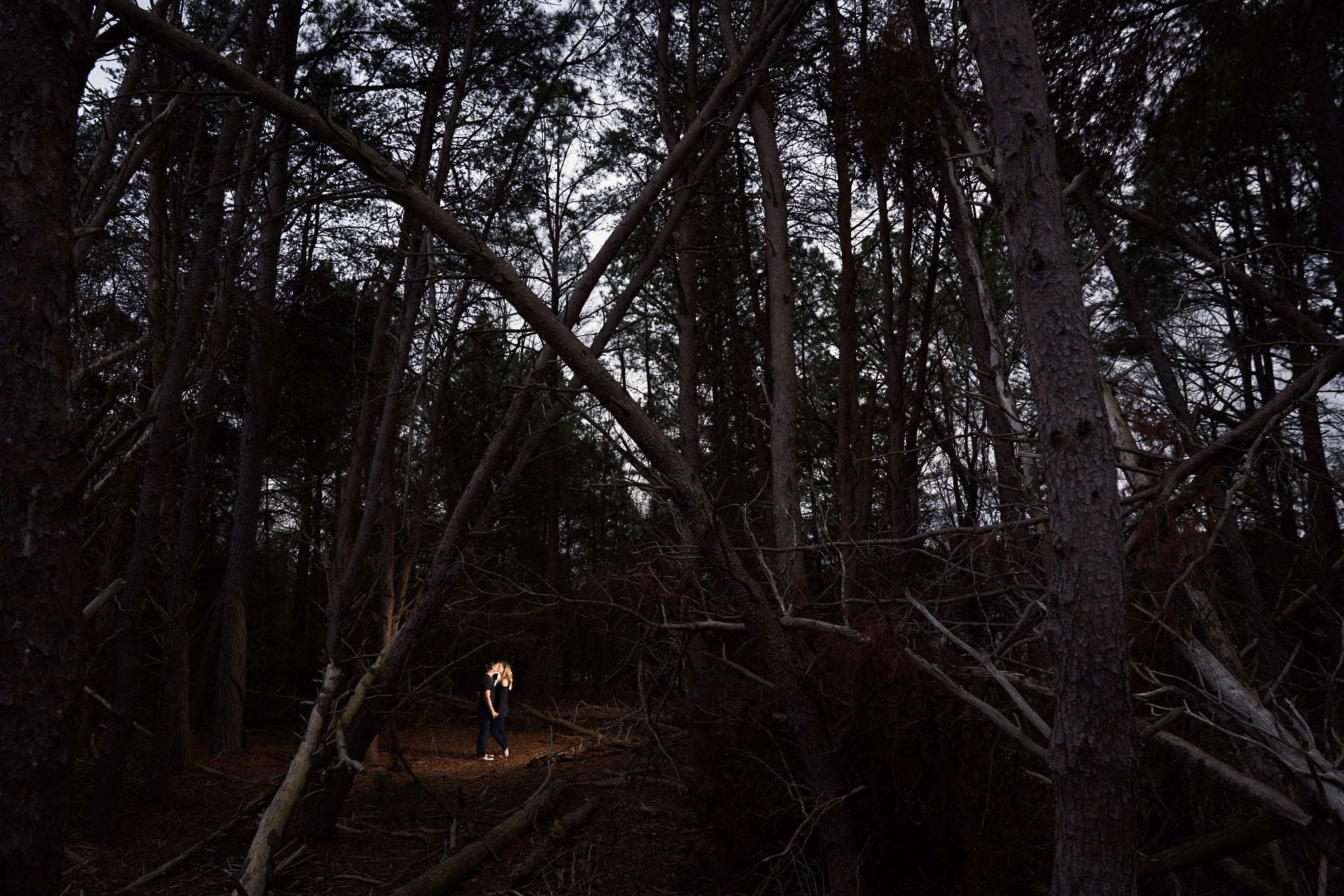 Couple in dark forrest | Engagement Session in Clemson, SC
