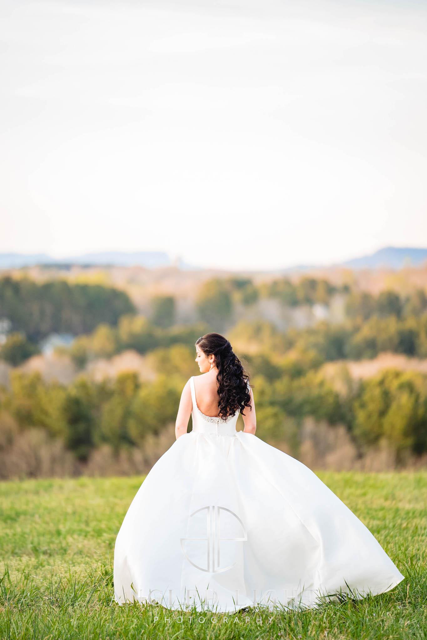 Bridal Portrait in Field Greenville SC
