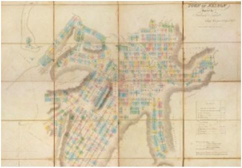 1842 New Zealand Company map