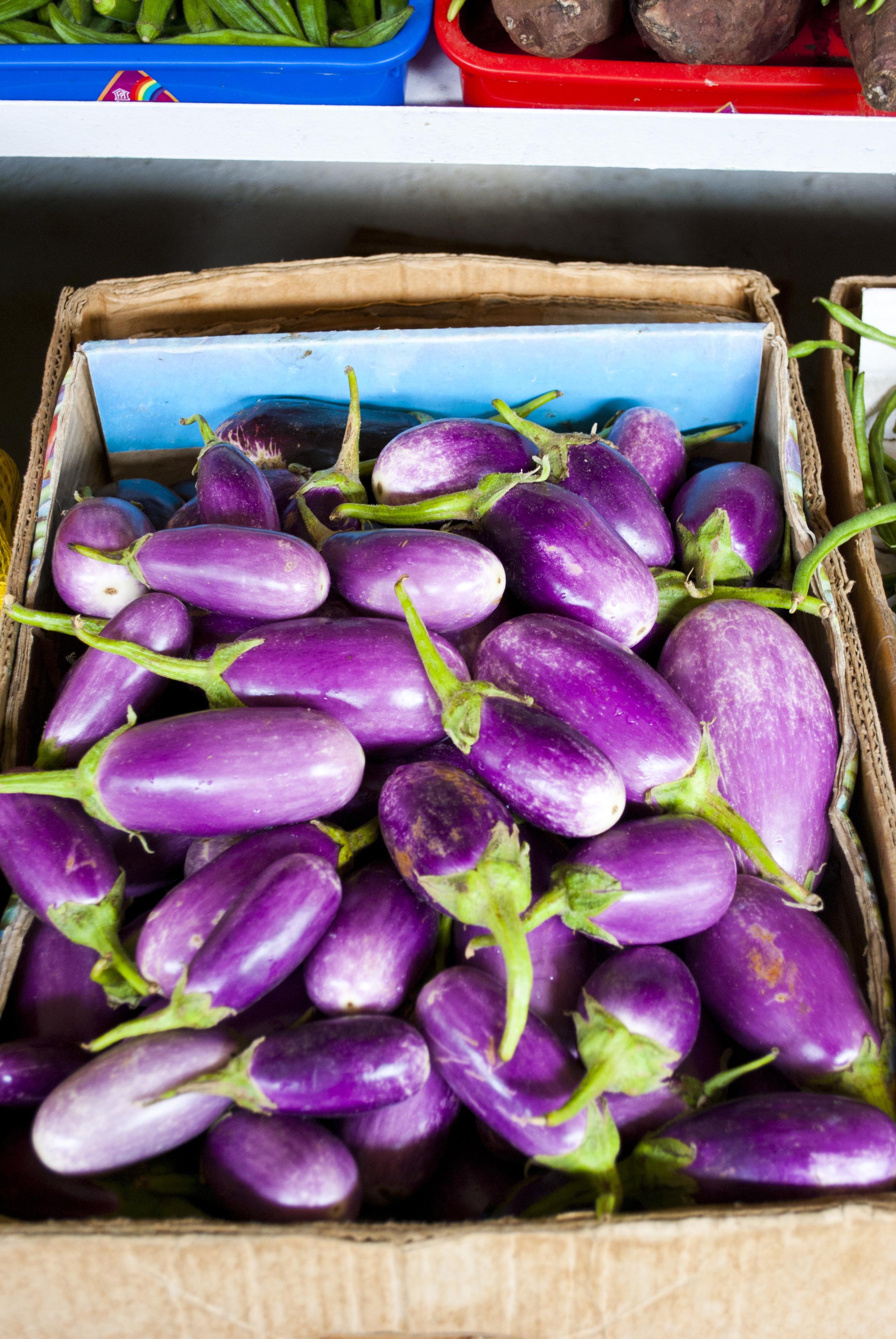 041411Dubai Eggplants